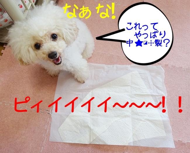 犬のレギュラーサイズのペットシート