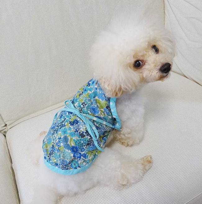 リバティ・プリントのマーガレット・アニーのブルーで作ったわんこ服