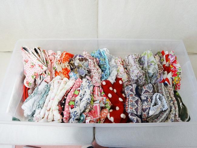 諭吉&杏のわんこ服の衣替え、クローゼットの収納ボックス