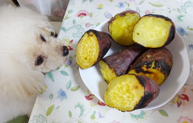 諭吉と自家製焼き芋