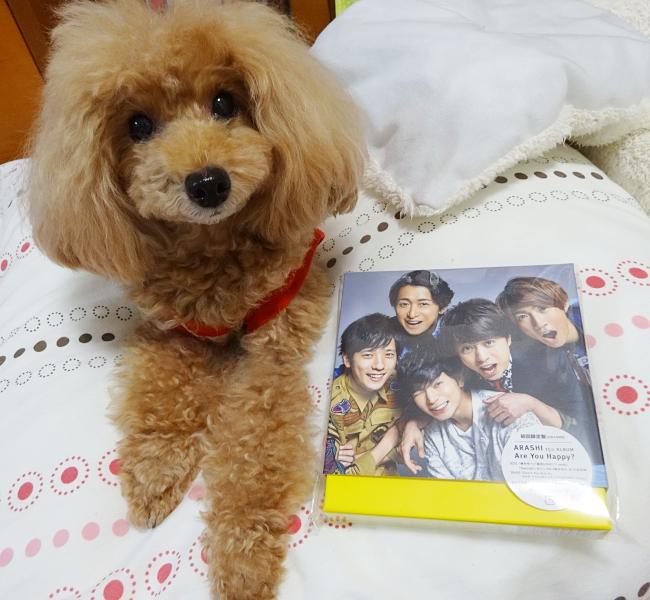 杏ちゃんと、嵐の15周年初回限定アルバム「ARASHI Are you Happy?」