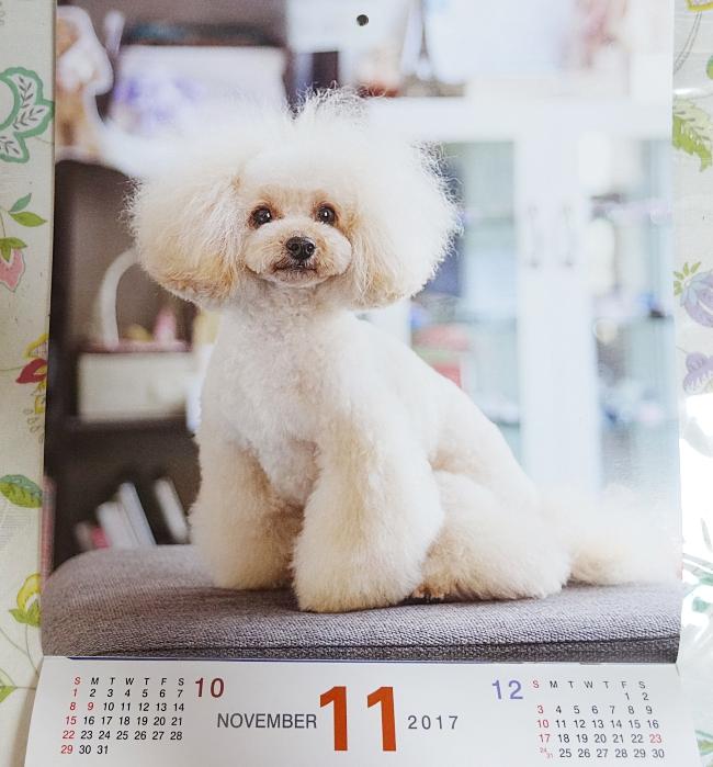 2017年度、京都 カフェソラのカレンダーに諭吉が登場