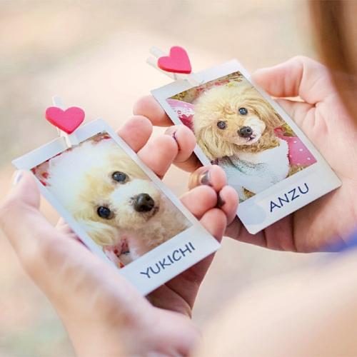 PhotoFunia バレンタインデー>二つのバレンタイン・デー