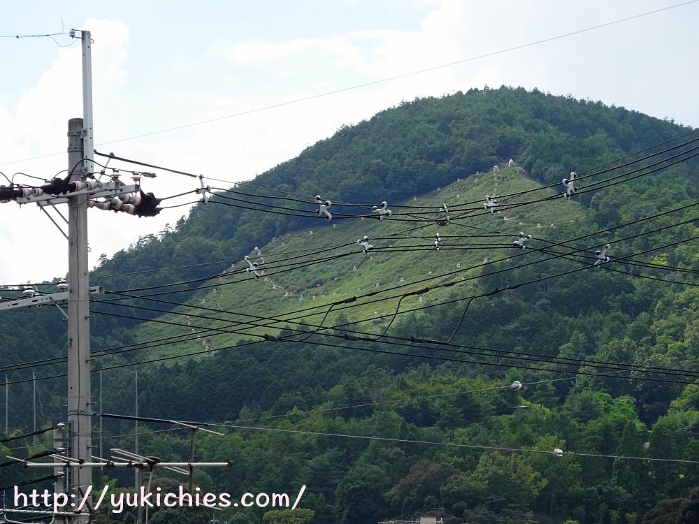 京都 船岡山(船山) 五山の送り火