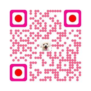 LIENスタンプ トイプー諭吉☆ゆるカワ犬 QLコード