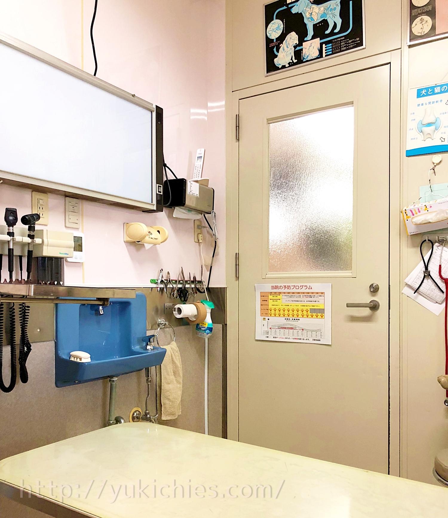 動物病院の診察室