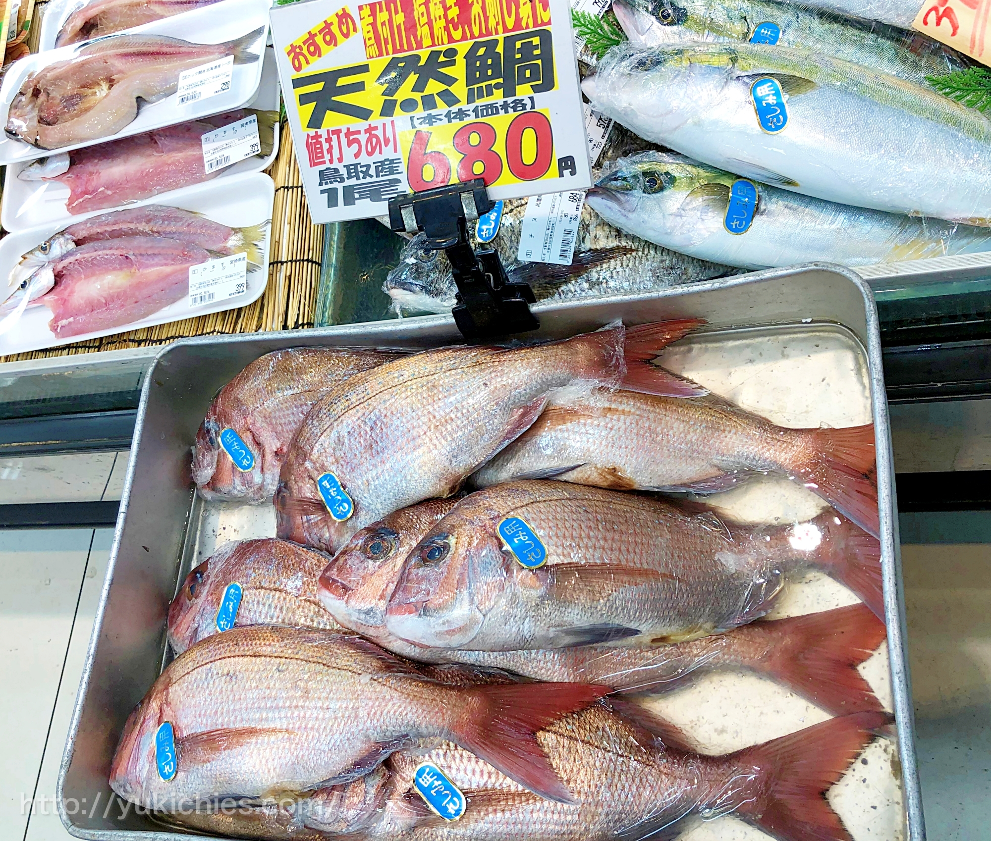 天然鯛 680円 刺身用