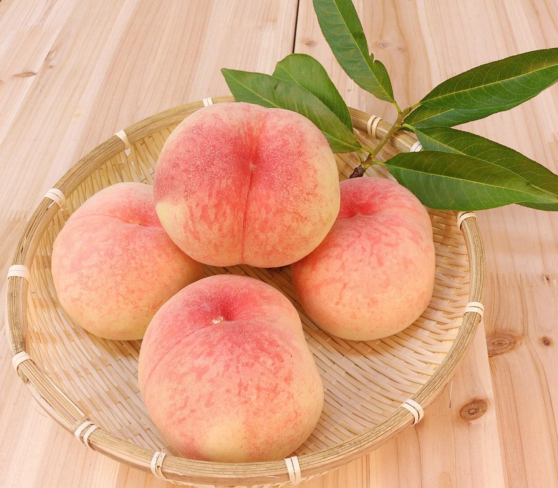 桃(peach)『黄金桃』『清水白桃』『ネクタリン』『秀峰』『白鳳』