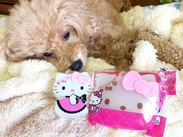 ダイソー商品 Hello Kittyのコスメケース