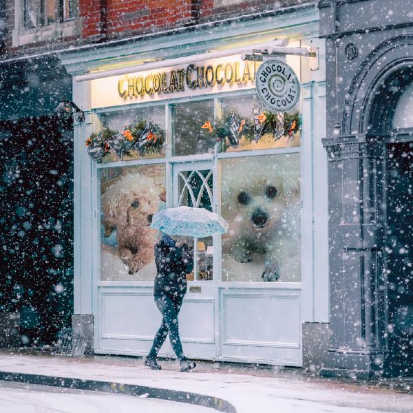 PhotoFunia 雪